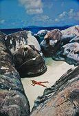 Uwe Ommer : das strand / la plage