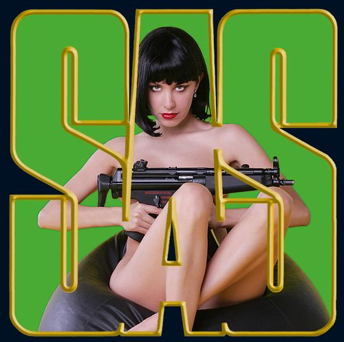 """27 - Thierry VASSEUR : SAS et """"Dangerous girls"""""""